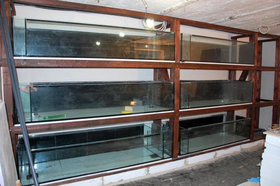 Die Aquarien sind mit HMF und Ablauf und Überlauf eingebaut in das Holzregal. Rechts müssen die Aquarien noch geklebt werden.