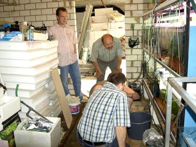 Besuch von meinen Regenbogenfischfreunden in der Notunterkunft
