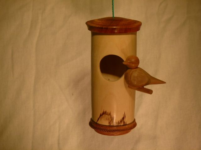 Vögel 5