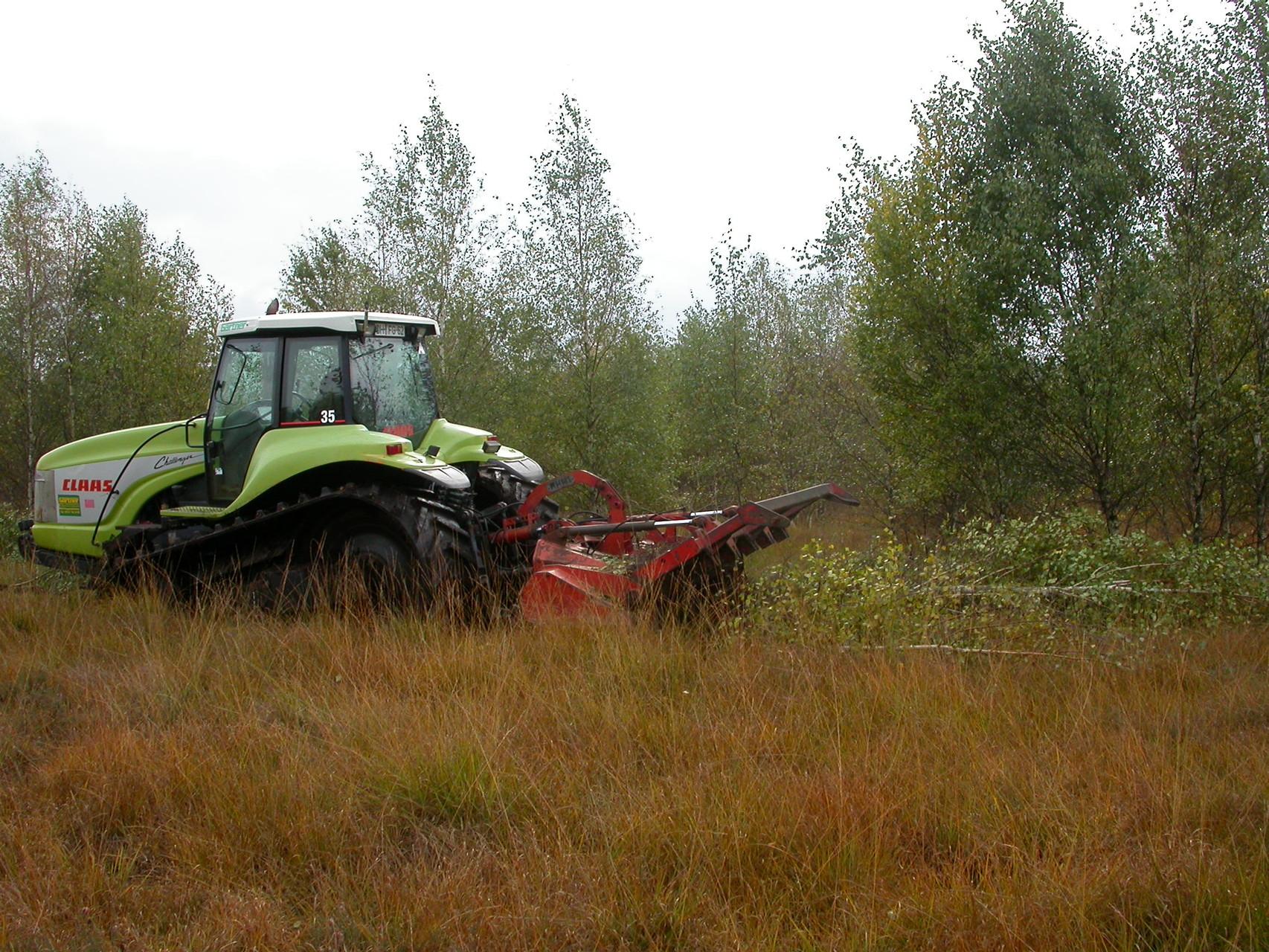 3. Forstfräse im Oktober 2004