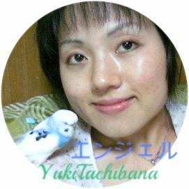 楽園の息吹に住む エンジェルと。立花雪 YukiTachibana