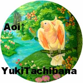 楽園の鳥達 立花雪 YukiTachibana