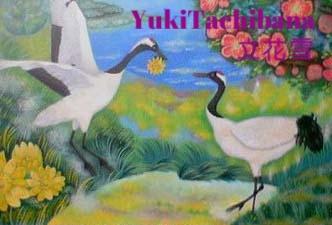 立花雪 YukiTachibana  作品 丹頂鶴