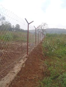 Zaun in Ntungamo