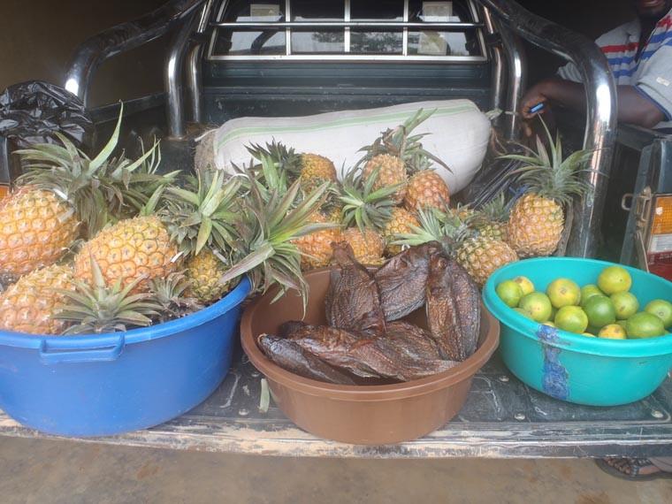 Früchte für die Kinder.