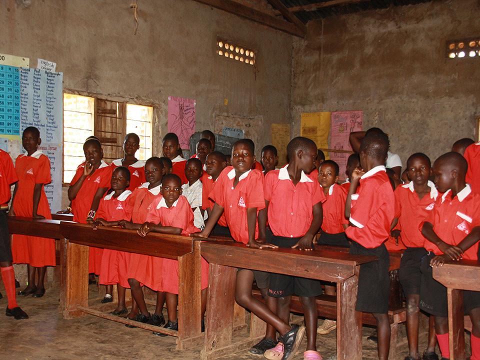 Sage und schreibe 61 SchülerInnen werden in fünf Klassen...
