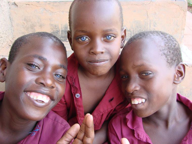 ...davon haben die drei Brüder blaue Augen!