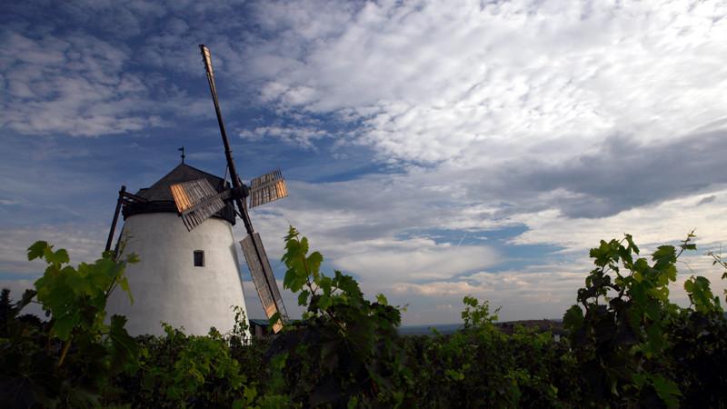 2014 10_die windmühle zu retz