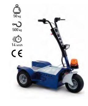 Vehículo eléctrico 3 ruedas