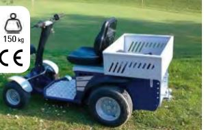 Vehículo eléctrico 4 ruedas