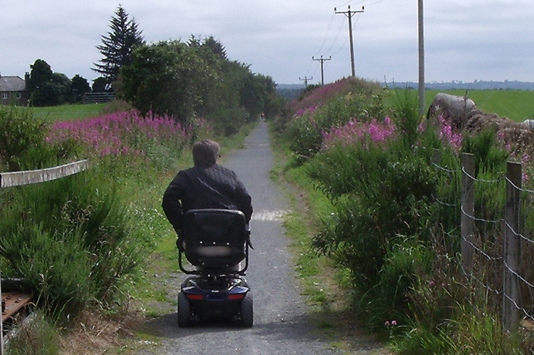 Disabled Access On Electric Buggies