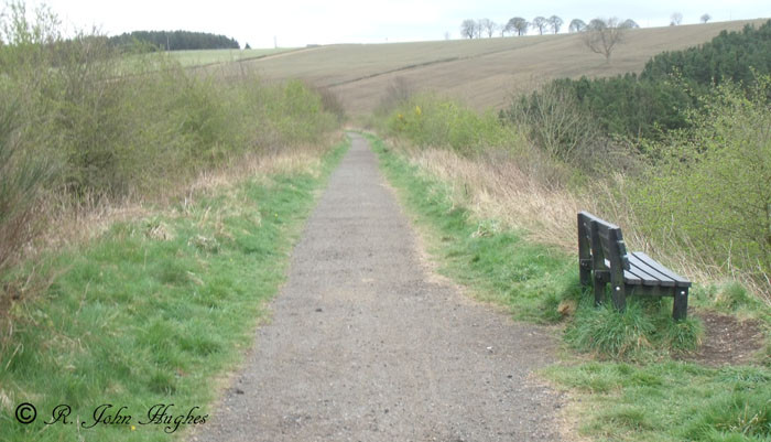 Near Lanchester - Sustrans path