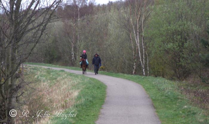 Near Gateshead - Sustarns path