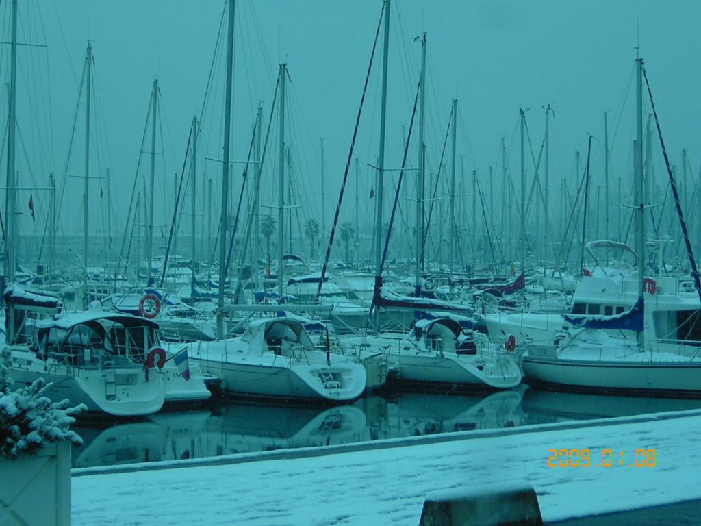 Le port de plaisance sous la neige