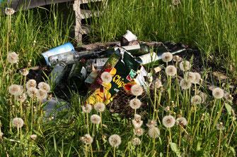 Müll in der Natur (Bild: Dieter Hopf, LBV-Archiv)
