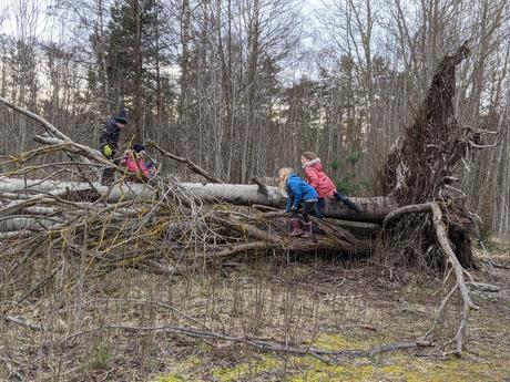 Foto: LBV Kindergruppe Erlangen