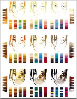 Die differenzierten Farbtypen