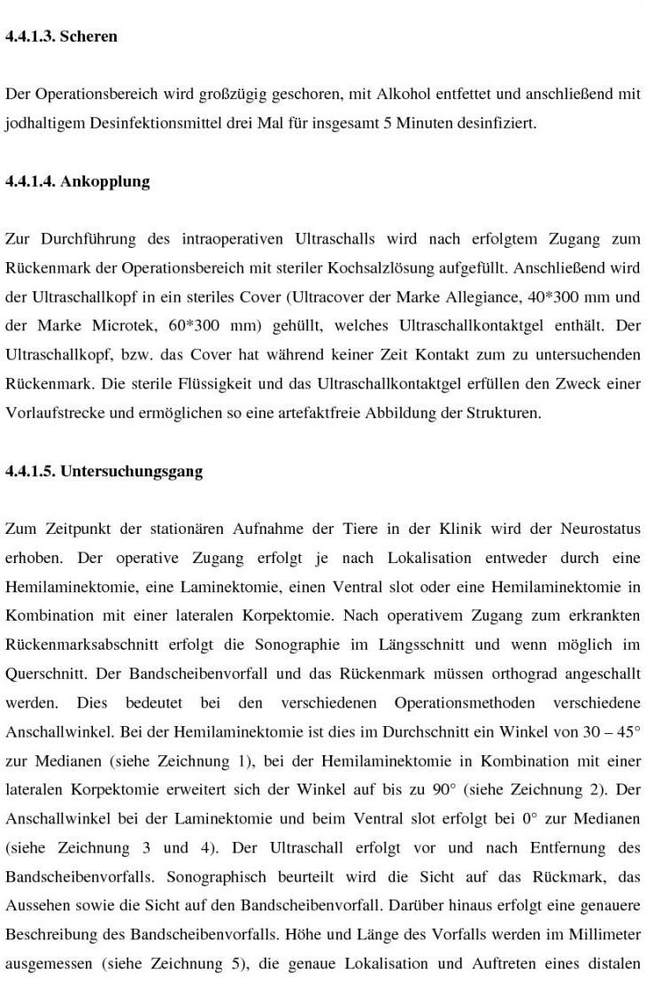 Einsatz der Sonographie zur Untersuchung von Rückenmark und ...