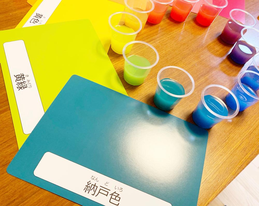 色水実験の様子