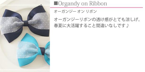 M Style Ribbon Class (エムスタイルリボンクラス)リボンレッスンオーガンジーリボンの透け感がとても涼しげなリボン。 春夏に大活躍すること間違いなしです♪