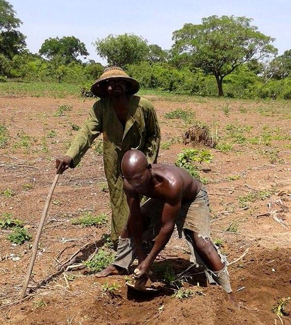 Senufo farmer Tefala-Ndong hat Madinin