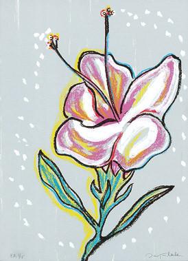 6.- Floraleza,  Serigrafía de  43 x 31 cms.