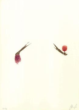 9.- El Bebedor de Lágrimas,  Serigrafía de  43 x 31 cms.