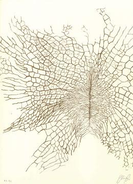 8.- El Bebedor de Lágrimas,  Serigrafía de  43 x 31 cms.