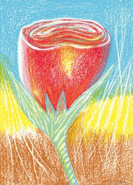10.- Floraleza,  Serigrafía de  43 x 31 cms.