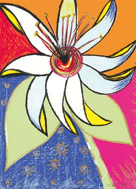 19.- Floraleza,  Serigrafía de  43 x 31 cms.