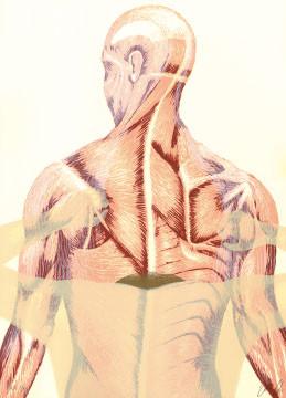 12.- El Bebedor de Lágrimas,  Serigrafía de  43 x 31 cms.