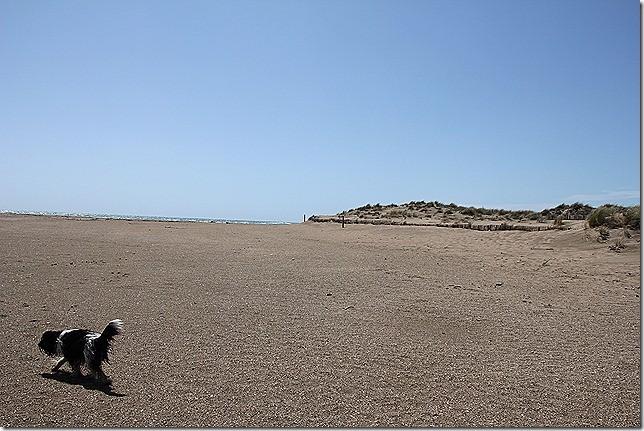 Der Strand in Portiragnes