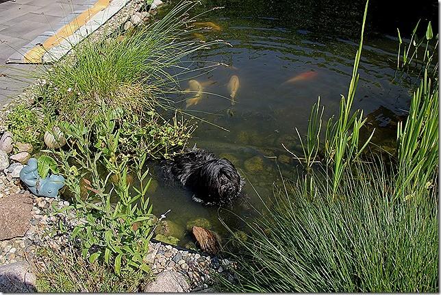 OMA Fly 13 Jahre... im heiligen Teich