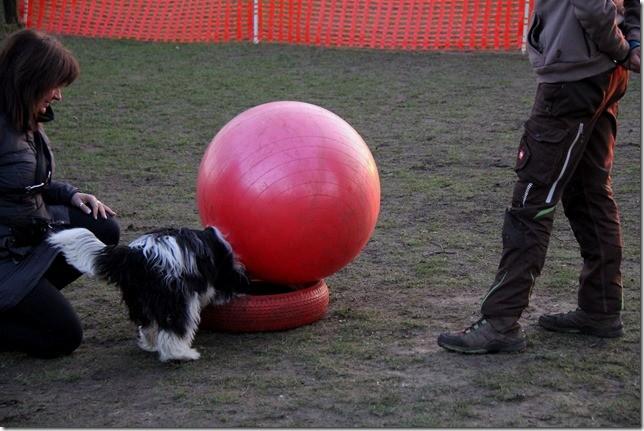 ....und jetzt den Ball vom Reifen stubsen! Das kann ich schon!