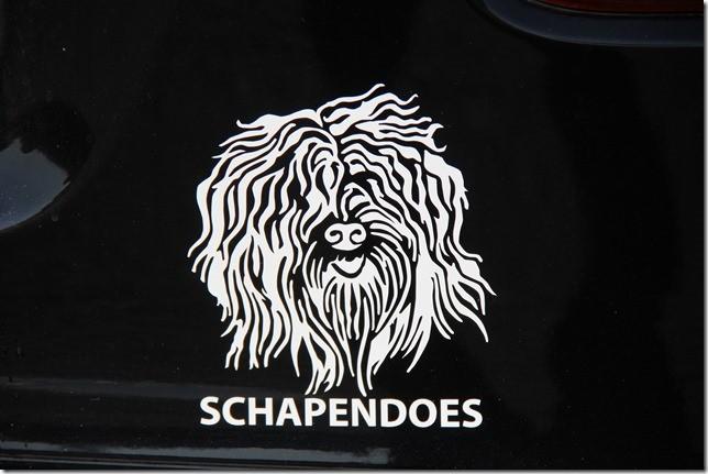 Schapi-Autoaufkleber