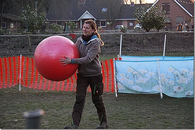 Petra bringt den Treibball für Amara