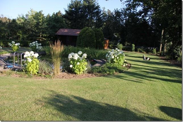 Der Garten gehört zum Ferienhaus