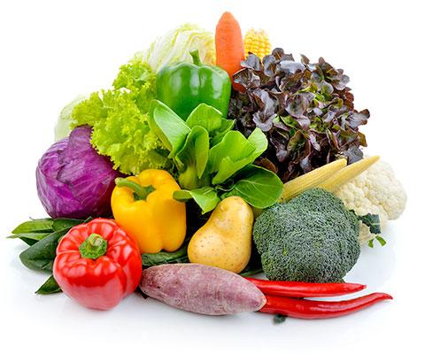 色鮮やかな5色の野菜