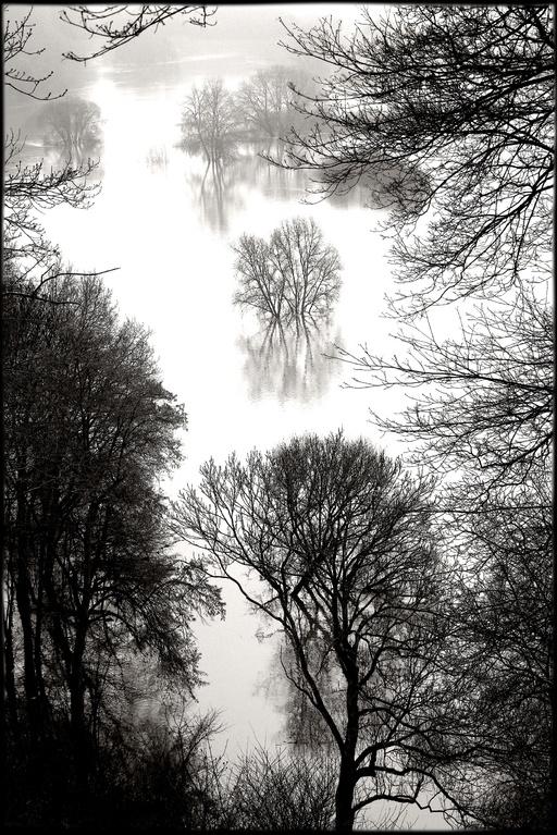 Hochwasser bei Hitzacker (2011)