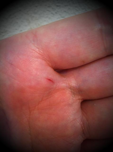 """セコ切り:人差し指と中指の間をハサミで切るとこう言います。 この言い方が美容業界で一般化してるかどうかわかんないけど、僕がまだ見習いのころカット練習でこの部分を切ると先輩に「セコ切りやんw」って教えてもらいました。 でなんで""""セコ""""なのか?セコはセコイのセコですけど、髪を指に挟んでカットする際、最後のギリギリまで切ろうとする、、その時に切ったりしますww すると先輩方は「一回で切ろうとすからや! また取り直してカットしたらええやろ!w」と言われたことを思い出し、、。 ノスタルジックに浸ってみましたww"""