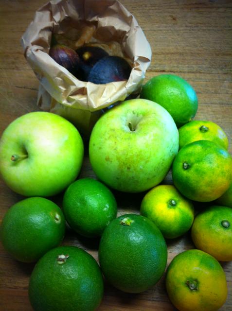 Dさんに家庭菜園で採れたイチジク、リンゴ、レモン、みかん、を頂いた♪ 家庭菜園でコレだけのものが、。お店に並んでいる物ではない、ちょいいびつな形が可愛くて◎