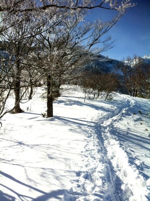 先行者の圧雪ルートがあるおかげでサクサク進むことができて楽ちん♪