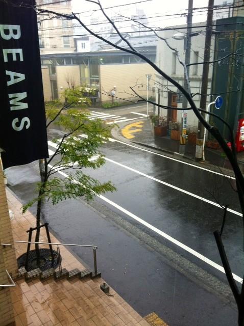 久しぶりにガッツリ雨やわ~、、、、