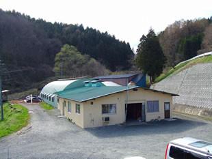 店舗すぐそばの牛舎で毎日乳搾りをしています。