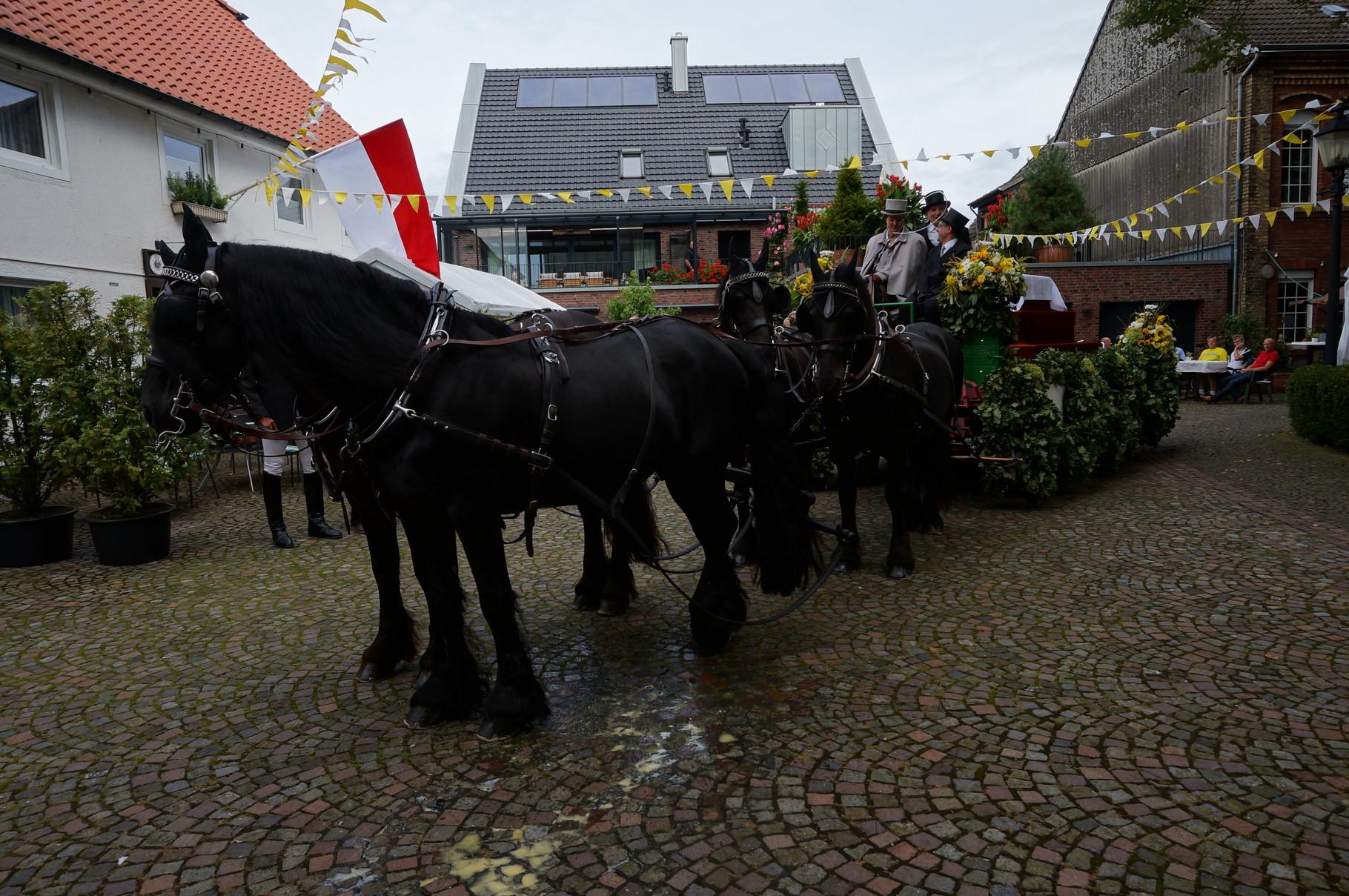 Wagen für den Ida-Schrein mit 4er Gespann von Königsbusch Wadersloh