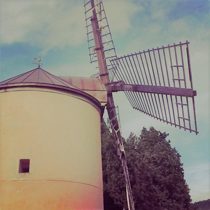 Tour zur Windmühle