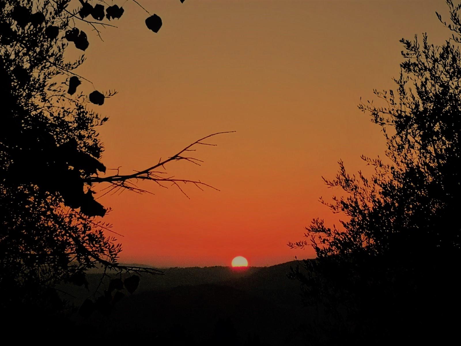 Abendsonne in der Toskana