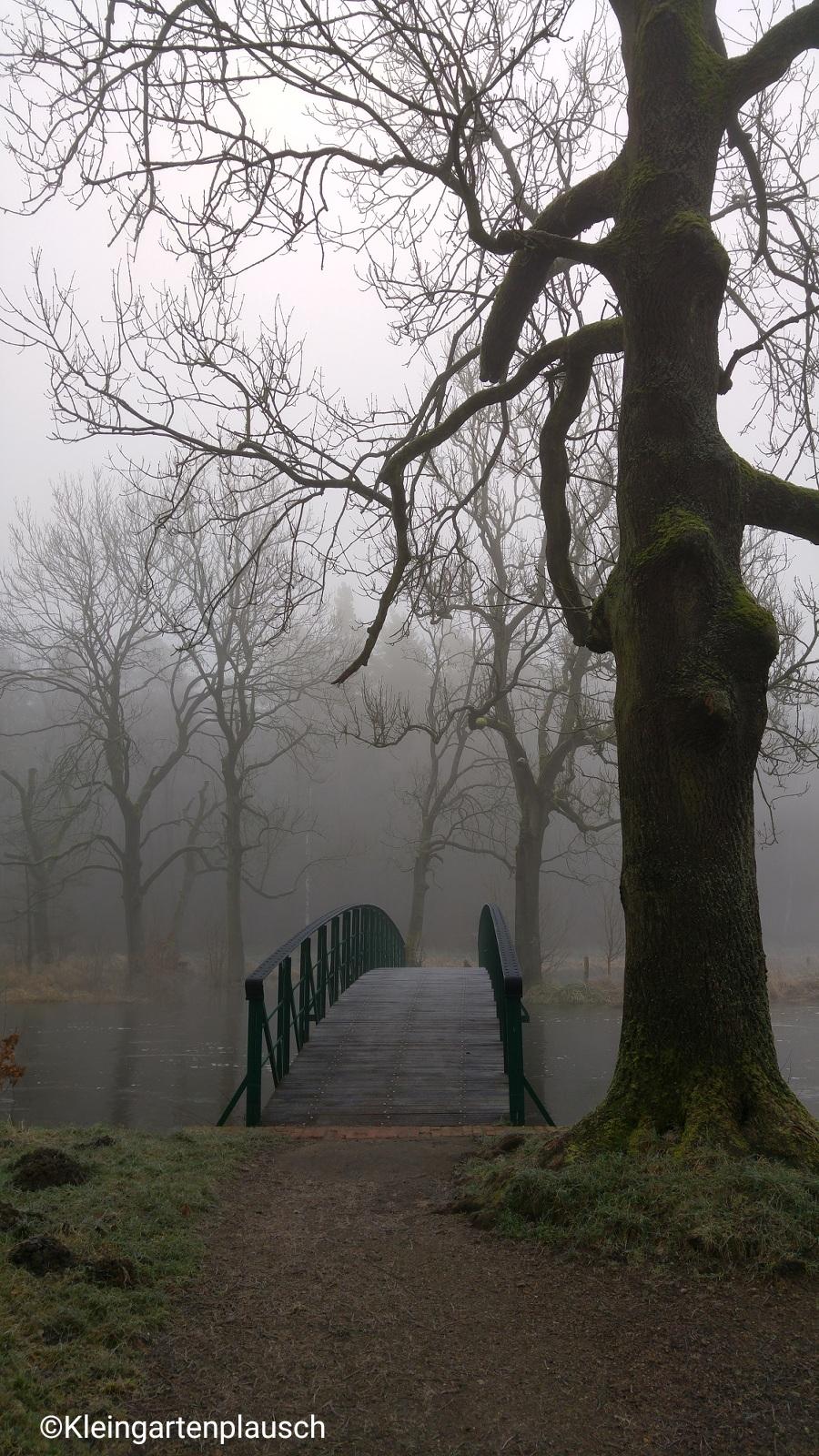 """Hier dachte ich, taucht gleich wirklich """"das Brückengespenst""""  aus dem Nebel auf: Mit der launigen Rezitation  des gleichnamigen Gedichts des Schweizers Carl Spitteler hat mich meine in hohem Maße gedichtsaffine Mutter als Kind oft genervt 😉. Mal googeln, es ist ganz niedlich..."""