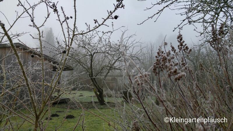 Winterverwunschener  Obstkleingarten mit schöner Holzhütte...