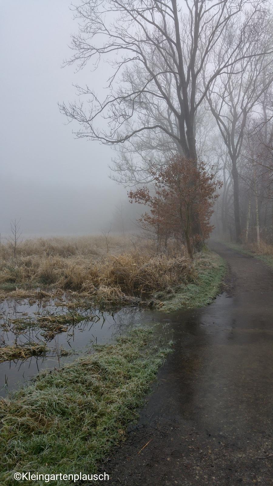 Hier wurde es doch sehr feucht, und wir mussten trotz wasserfester Schuhe vorsichtig  drumherumlaufen ...
